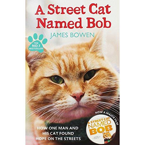 James Bowen Un Gato Callejero Llamado Bob