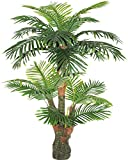 AMERIQUE Gorgeous & Unique 5 Feet Tropical Palm Artificial Plant Silk Tree, Real Touch Technology, with UV Protection, Super Quality, 5', Green