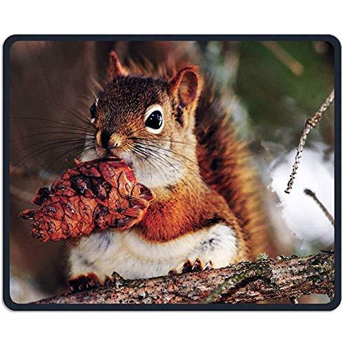 Muismat Dieren Voedsel Leuke Eekhoorn Rechthoek Rubber Mousepad Lengte 18 x 22 CM Gaming Mouse Pad Voor Creatief Geschenk