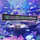Aquarium Lights Review and Comparison