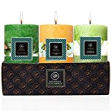 "EcoAroma CocoSoy Candles, 3""x4""H Balsam Cedar, Citronella, Mediterranean Citrus - 3 Pack Romantic Scented Pillar Candles for Home, Long Burning Coconut Soy Wax, Non Paraffin Wax, Essential Oils"
