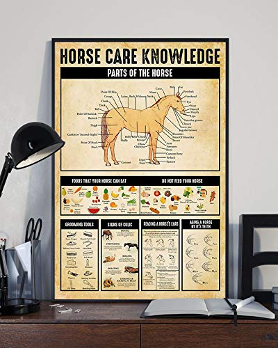 HolyShirts Horse Care Knowledge Parts of The Horse Foods That Your Horse can eat do not Feed Your Horse Poster (16