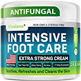 Vivalane Organics Antifungal Cream - Made in USA - for Athletes Foot, Jock Itch and Cracked Skin - Natural & Effective Cream for Itchy Skin with Tea Tree Oil - 2 fl oz