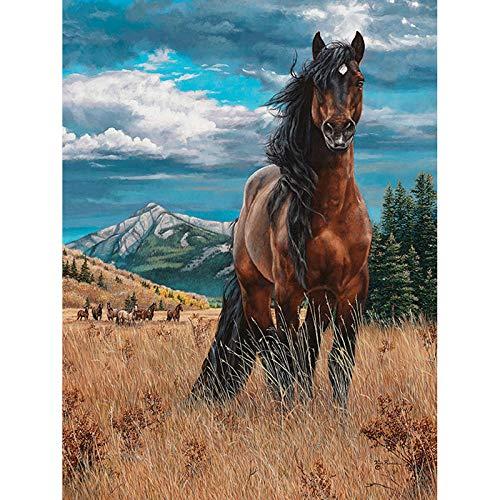 WTDR Diamant Malerei DIY Full Malerei Strass Bild 3D Handarbeiten Brown Horse Voll geklebte dekorative Wandaufkleber Cro,50 * 60cm Runder Diamant