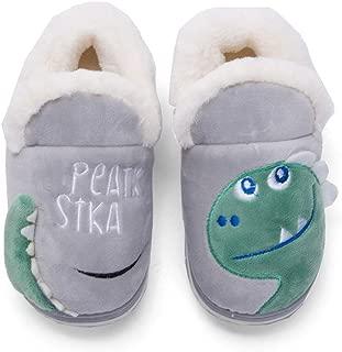 Plzensen Girls Boys Cute Home Shoes Kids Fur Lined Indoor House Slipper Warm Winter Home Slippers