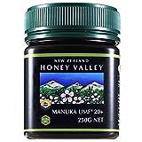 Pure New Zealand Honey アクティブマヌカハニー UMF20+ 250g ハニーバレー(100% Pure New Zealand Honey)マヌカ蜂蜜