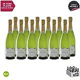 Crémant de Bourgogne Prestige de Constance Extra-Brut Blanc 2017 - Bio - Bruno Dangin - Vin effervescent AOC Blanc de Bourgogne - Cépage Pinot Noir - Lot de 12x75cl
