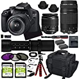 Canon EOS 2000D (Rebel T7) DSLR Camera with 18-55mm Lens, Canon 75-300mm Lens + 420-800mm Zoom Telephoto MF Lens with Premium Accessory Bundle