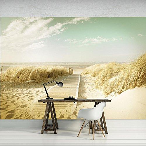 FORWALL Fototapete Tapete Strand P4 (254cm. x 184cm.) AMF11600P4 Wandtapete Design Tapete