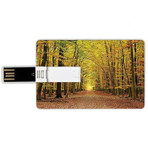 8GB Forma de tarjeta de crédito de unidades flash USB Caídas de otoño Estilo de tarjeta de banco de Memory Stick Sendero en el bosque de otoño con hojas marchitas Escena dramática de la temporada romá