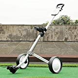 Massage-AED Chariot De Golf 2 Roues,Chariot De Golf Professionnel Pliante 2 Roues Chariot pour Sac De Golf en Plein Air Golf Sport Training Match Aéroport Bagages Check Transporteur Golf Caddy