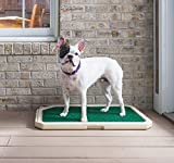 Piddle Place Indoor/Outdoor Potty