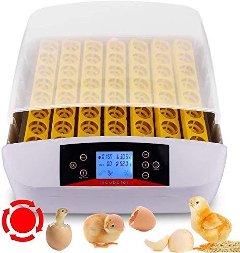 Inkubator Große Brutmaschine Vollautomatisch, 56 Hühner Eier Brutgerät Intelligent Brutapparat Brutautomat Brutkasten Motorbrüter mit LED Temperaturanzeige und Feuchtigkeitsregulierung (LED)