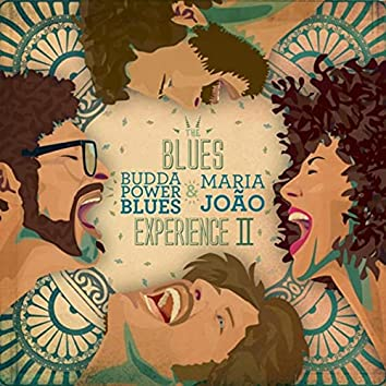 The Blues Experience II