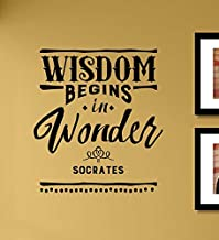 Wisdom begins in wonder Socrates Vinyl Wall Art Decal Sticker