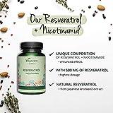 Zoom IMG-2 resveratrolo vegavero 500 mg l