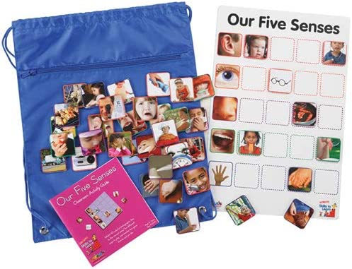 Kaplan Early Learning Company Our Max 48% OFF Direct sale of manufacturer Interactive Senses Five Game