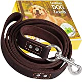 Leather Dog Leashes Review and Comparison