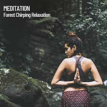 Meditation: Forest Chirping Relaxation