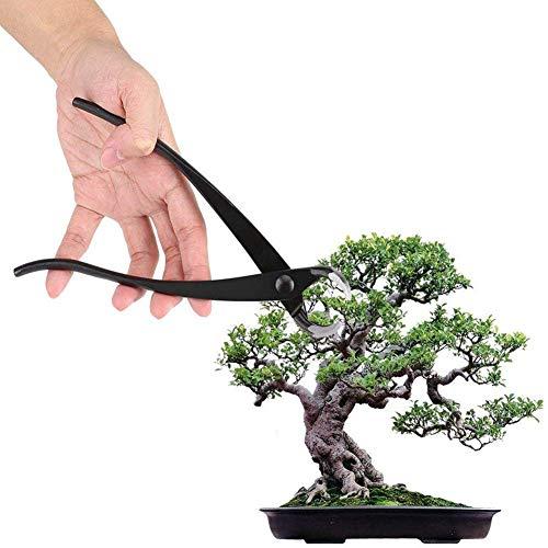 DSHUJC Outil de Coupe de bonsaï, Coupe-Branche de Bouton Professionnel en Alliage de Zinc avec Bord Rond Jardinage Pince Outils de bonsaï