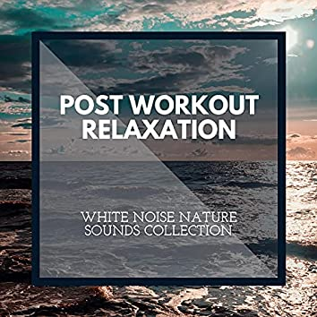 Post Workout Relaxation - White Noise Nature Sounds Collection