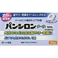 【第2類医薬品】パンシロンクールNOW 36錠