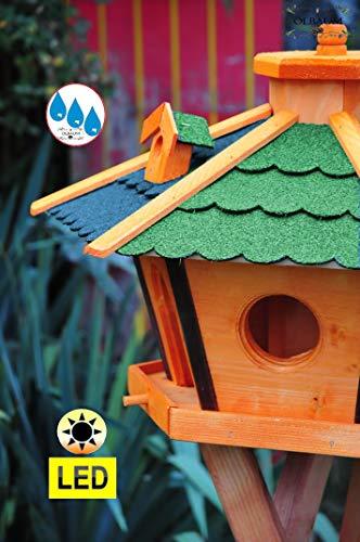 Vogelhaus Massivholz,Massiv-WETTERFEST, mit Silo,Futtersilo für Winterfütterung,mit Beleuchtung LED-Licht -Holz Nistkästen & Vogelhäuser- Futterstation aus Holz mit Silo Holz grün BLAU BRL60g-bEOS, Futterhaus - 3