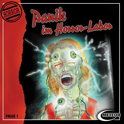 Couverture de Panik im Horror-Labor