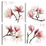 murando - Cuadro en Lienzo 40x40 cm - Magnolia - Impresión de 4 Piezas Material Tejido no Tejido Impresión Artística Imagen Gráfica Decoracion de Pared - Flor b-A-0259-b-j