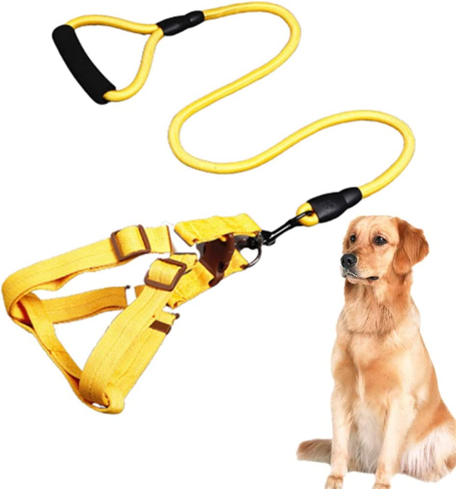 Bargain sale ppaphh Dog Max 63% OFF Harness Leash Lead Harne And Sets