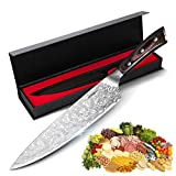Chef Knife 8 inch, HOKEKI Pro Kitchen Chopping Knife Stainless Steel Meat Vegetables Fruit Chef's Knives with...