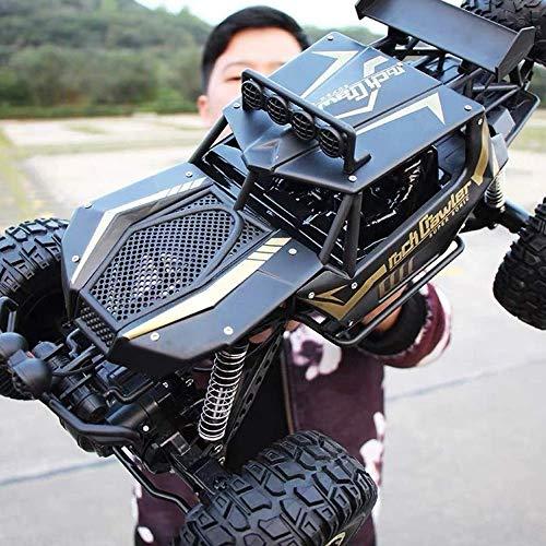 Darenbp RC Dirt Bike High 2.4Ghz Radio Remote Control Car...