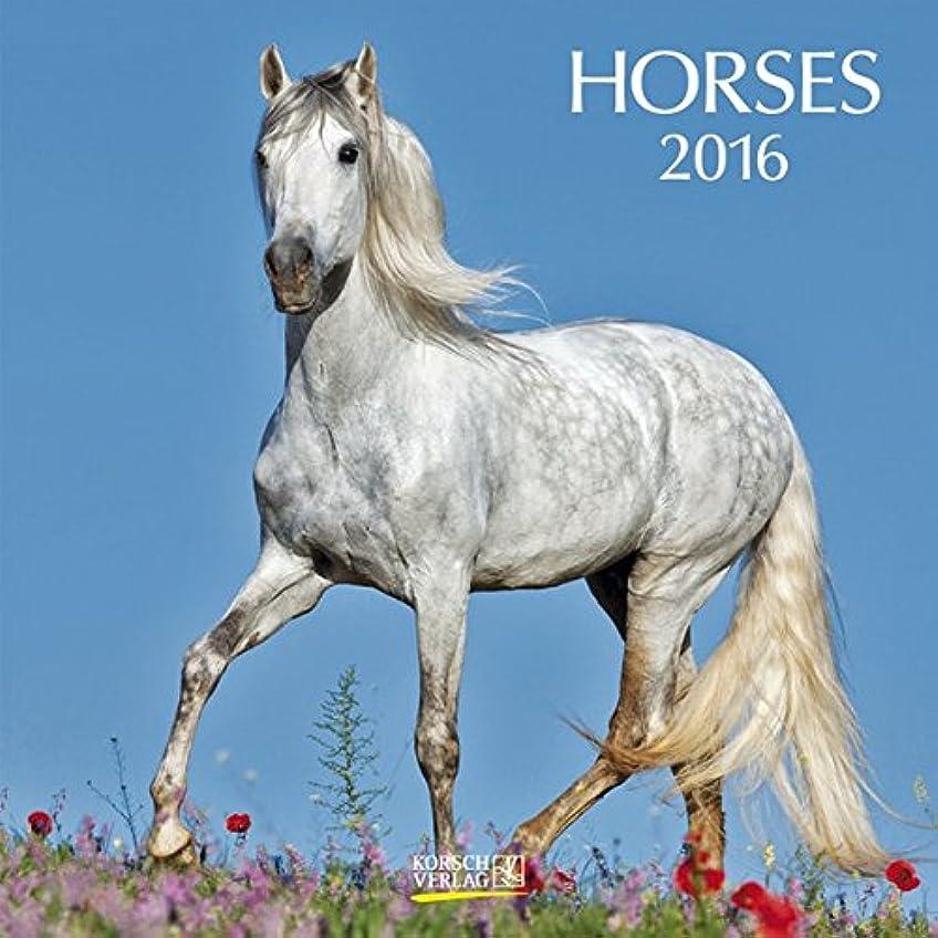 前にシンポジウム口径Horses 2016. Broschuerenkalender: Broschuerenkalender mit Ferienterminen