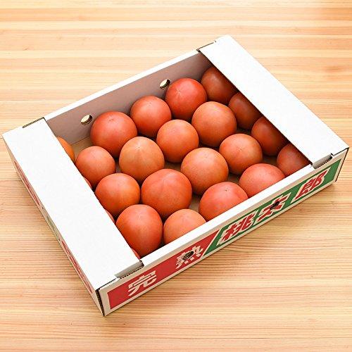 九州産 (熊本) トマト 1ケース 23〜24玉 新鮮 生 産地直送