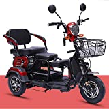 AA100 Scooter eléctrico Antiguo de Tres Ruedas/Motocicleta eléctrica de Tres...