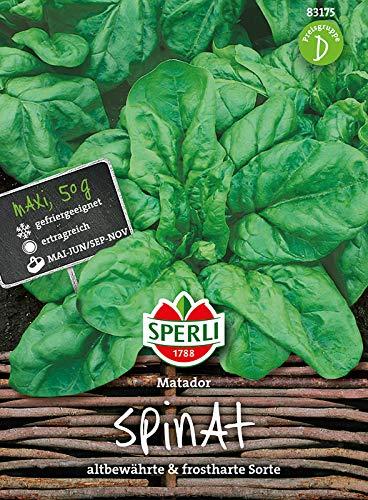 Sperli-Samen Spinat Matador (Maxipack 50g)