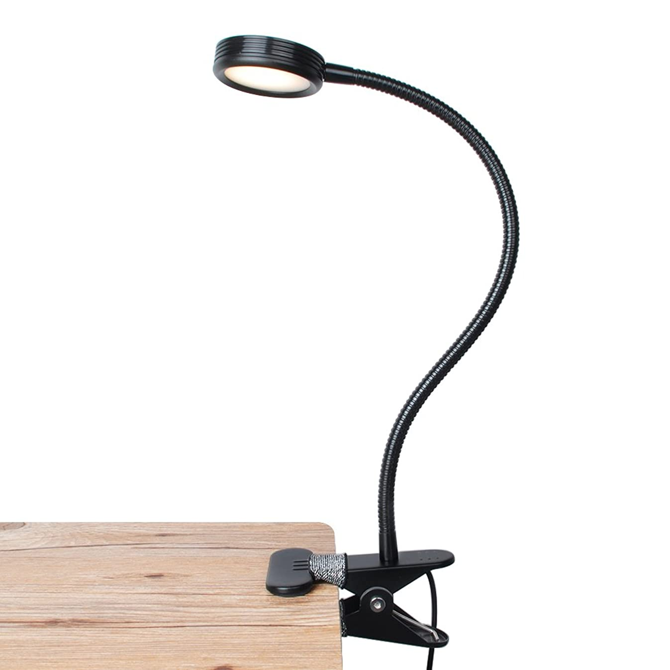 LEPOWER Clip on Light/Reading Light/Light Color Changeable/Night Light Clip on for Desk, Bed Headboard and Computers (Black)