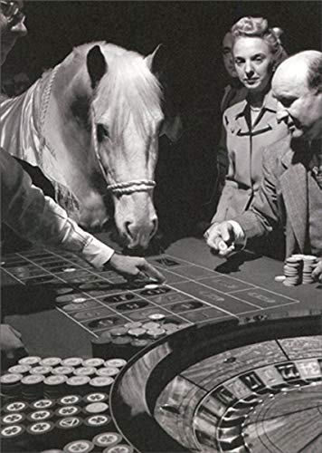 Lucky Silver Horse Plays Roulette - Avanti America Collection Funny/Humorous Birthday Card