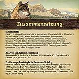 WOLFSBLUT Adult Trockenfutter 15 kg WIDE PLAIN Pferd + SüßKartoffel Adult für Hunde 15,0 kg - 2