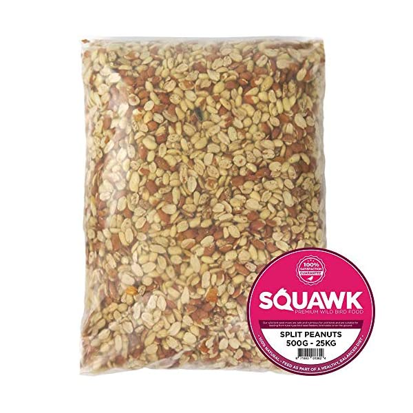 SQUAWK Split Peanuts | Premium Quality Fresh Feed | Garden Wild Bird Nut Food | Aflatoxin Free Mix | Protein Rich, High in Energy Mixture | Contains Nutritious Vitamins and Essential Oils