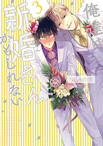 俺達は新婚さんかもしれない 【電子限定特典付き】 (3) (バンブーコミックス Qpaコレクション)
