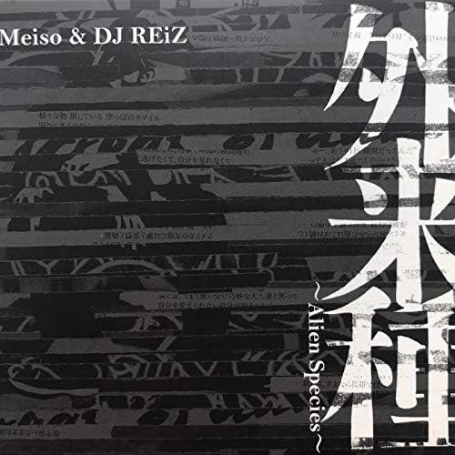 DJ Reiz & Meiso