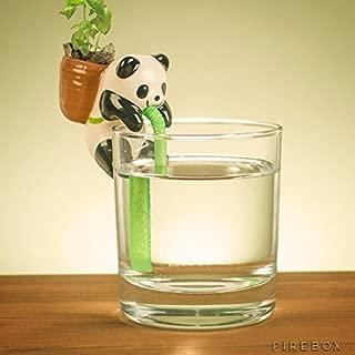 Best chuppon self watering Reviews