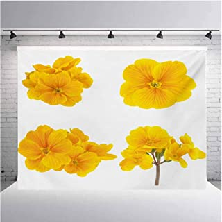 Yellow Flower Photography Background Cloth Gardening Themed Collection with Little Tender Primrose Primula Blossoms for Photography,Video and Televison 10ftx8ft Mustard White