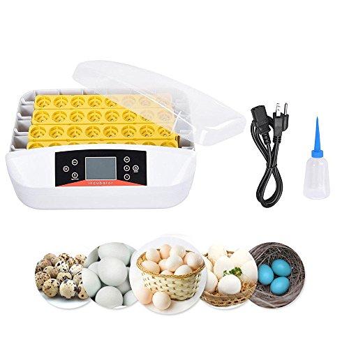 prit2016 32 Eier Vollautomatische Geflügel Inkubator Brutkasten Brutapparat Brüter Brutmaschine Inkubation Automatischer Eierwender