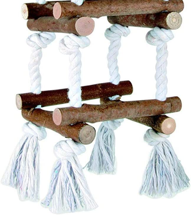 Danigrefinb Juguete de Loro para Colgar Juguete para Mascotas Cuerda de Tronco de Loro para Loro Escalada Madera decoraci/ón de Jaula Periquito