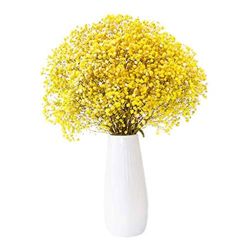 Mengmengda Ramo de flores secas para bebé, diseño de Gypsophila, color brillante, flora artificial para accesorios de fotos, oficina, decoración de bricolaje