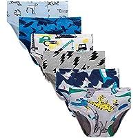6-Pack Boboking Little Boys Briefs Dinosaur Kids Underwear