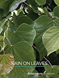 Rain On Leaves (short)