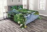 ABAKUHAUS Natur Tagesdecke Set, Wasserfall Rock Wald, Set mit Kissenbezügen Moderne Designs, für Doppelbetten 220 x 220 cm, Fern grün hellblau